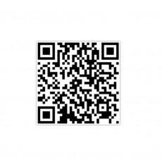 19-05-31-15-51-31-617_deco